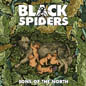 Black_Spiders_thmb