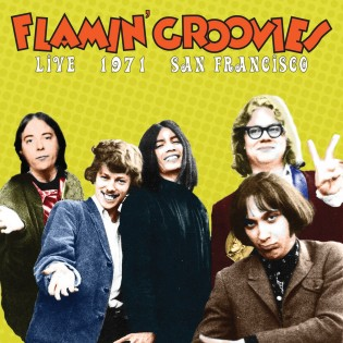 Flamin Groovies Live cover
