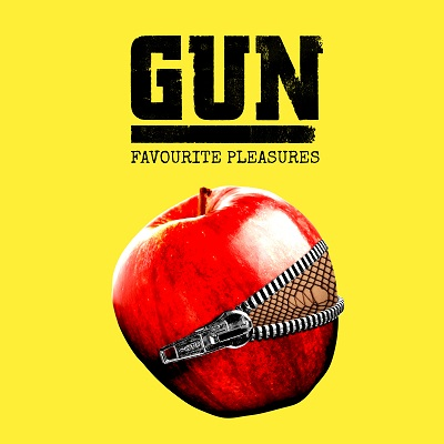 Gun FavPleasures Std Cover