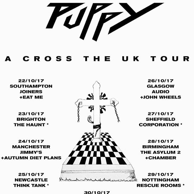 Puppy tour poster square